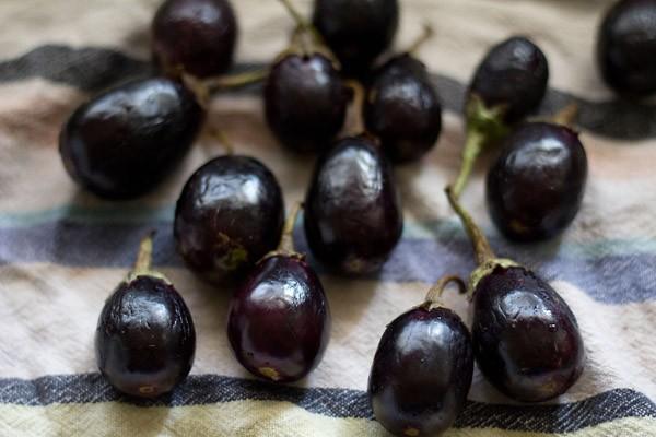 baingan, eggplant, brinjals