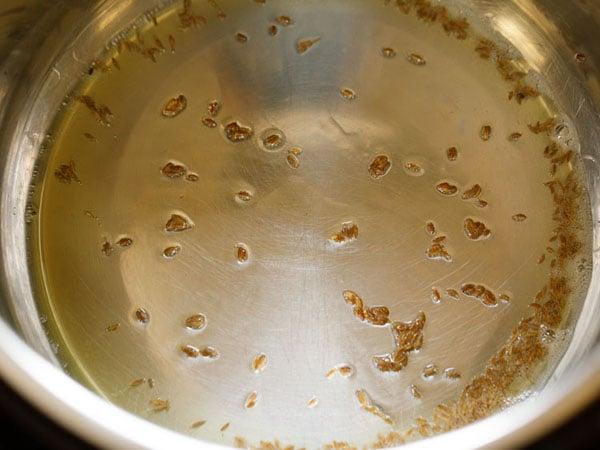 cumin seeds spluttering