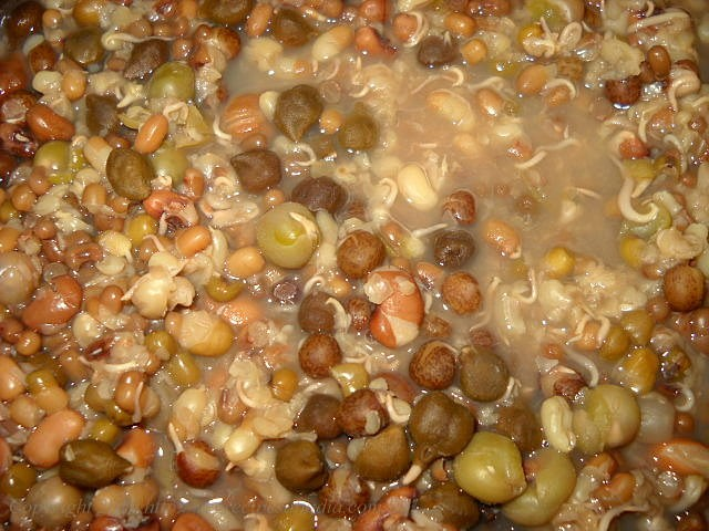 boiled mixed sprouts for usal