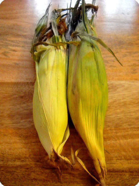 fresh corn from market