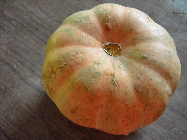 kaddu-pumpkin