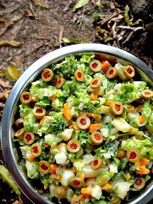 spanish salad, vegetarian spanish salad, eggless spanish salad recipe
