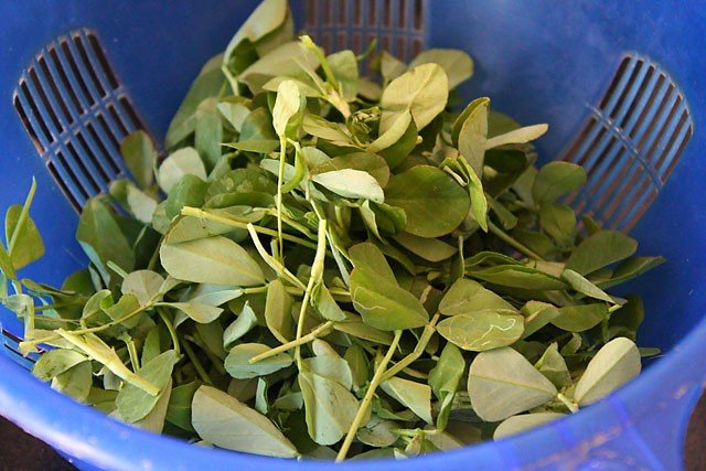 methi matar malai - methi fresh leaves