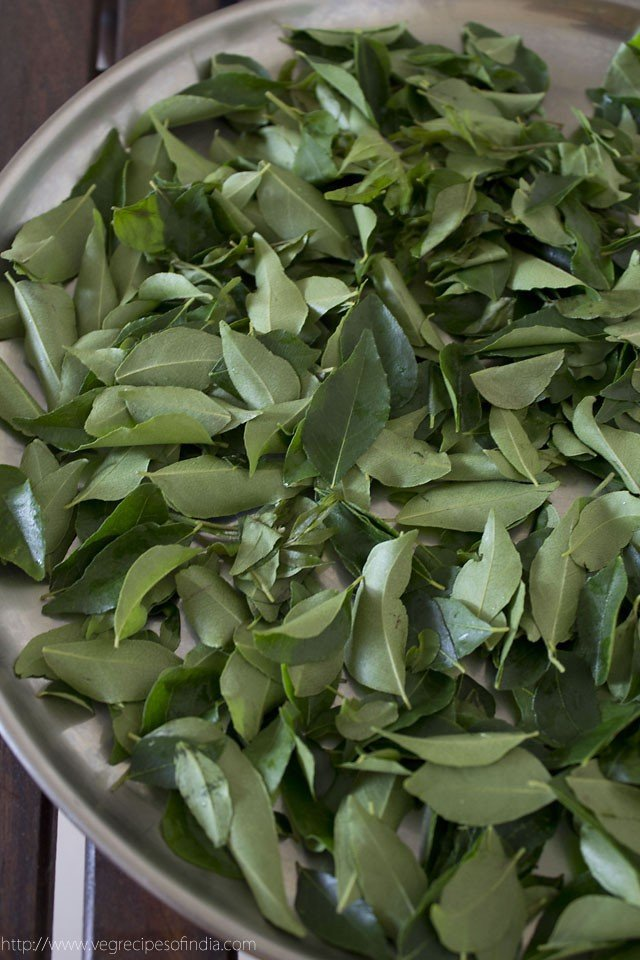 preserving curry leaves or kadi patta