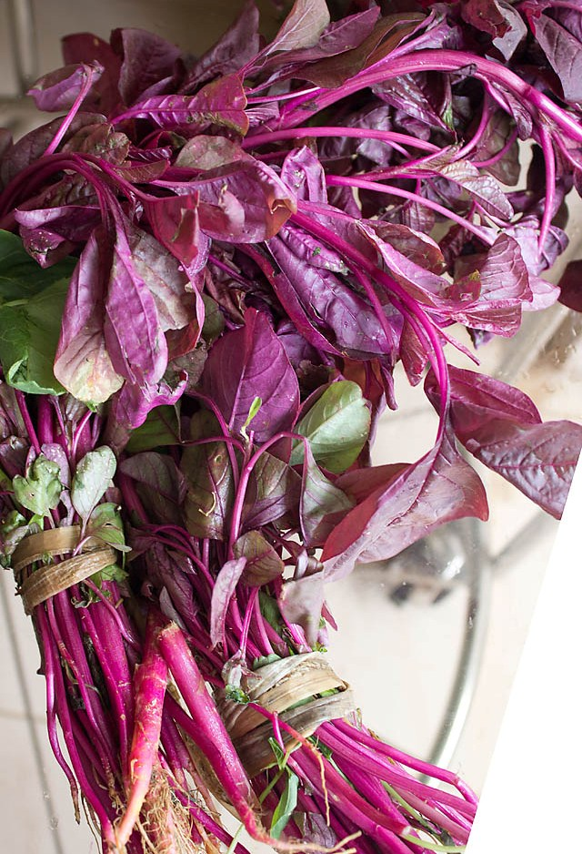 red-amaranth