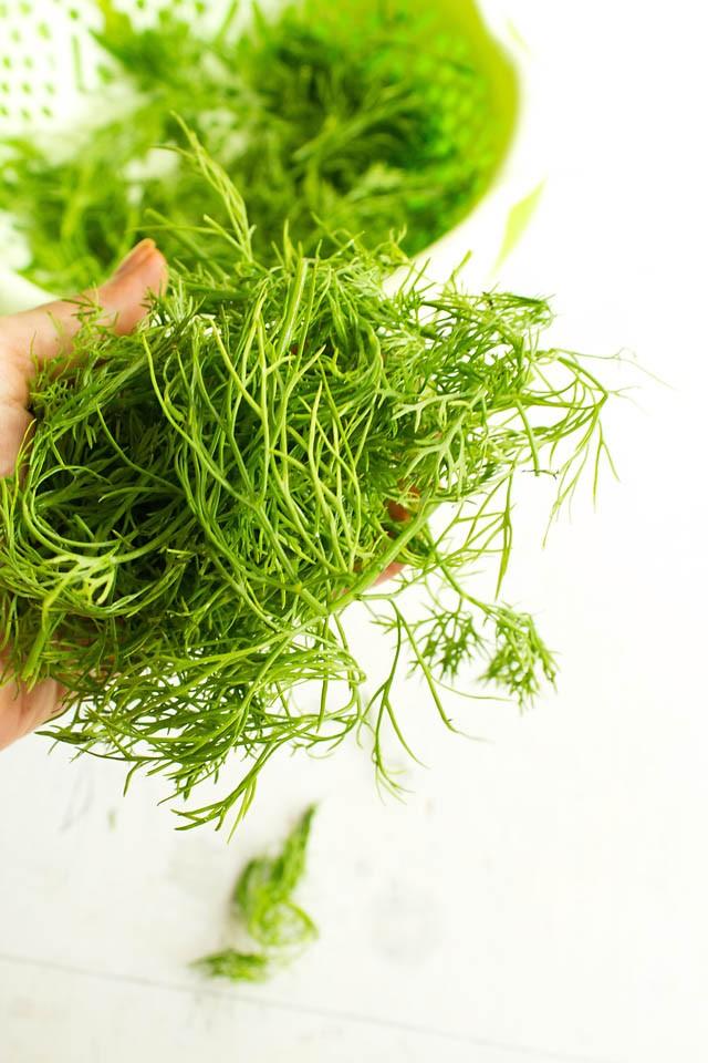 dill leaves or shepu sua