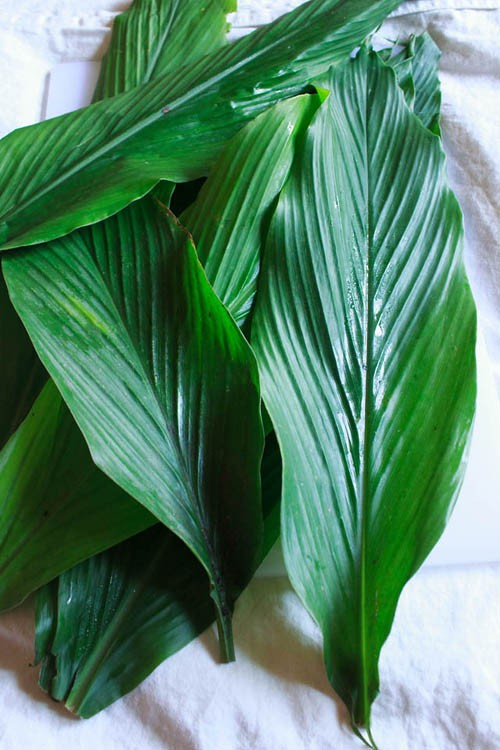 turmeric leaves for vegan rice payasam recipe