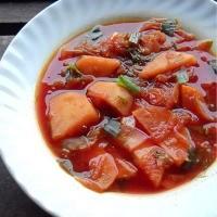 borscht-russian-soup