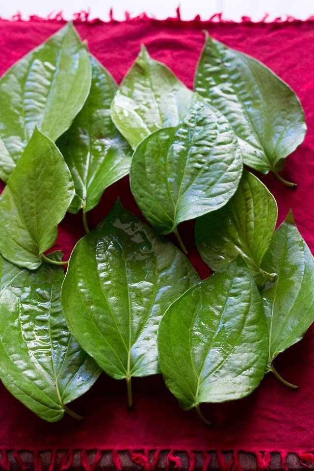 paan or betel leaves