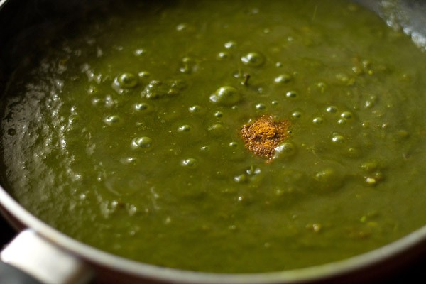 added garam masala powder to the spinach sauce