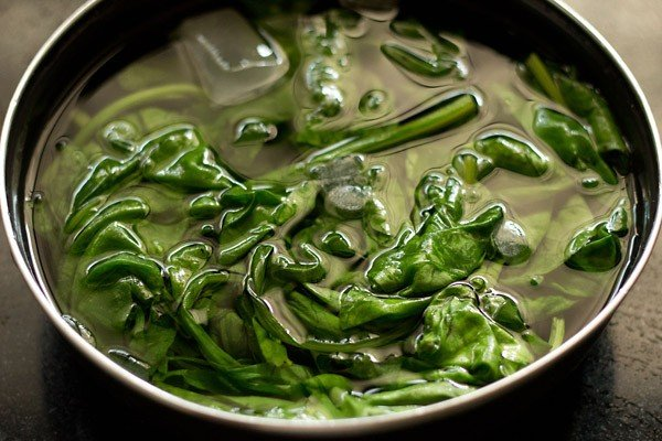 making palak paneer recipe