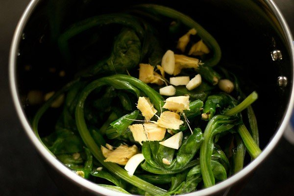 spinach leaves, garlic, ginger and green chillies added in a blender