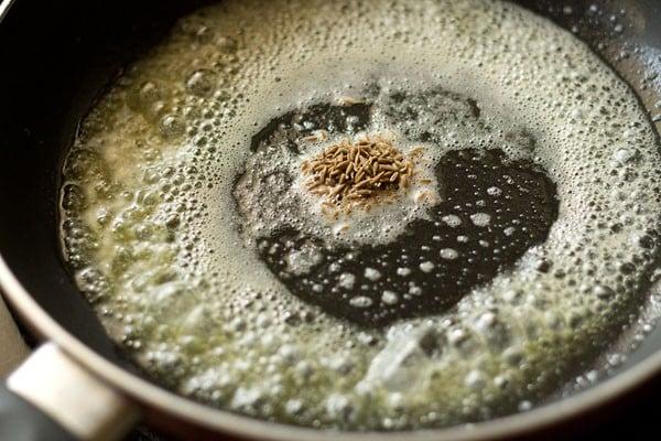 add onions - making palak paneer recipe
