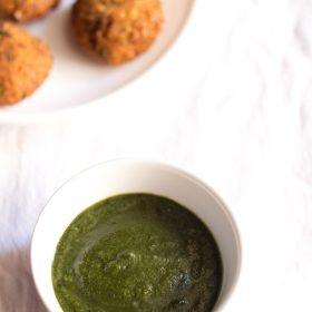 phalahari chutney recipe