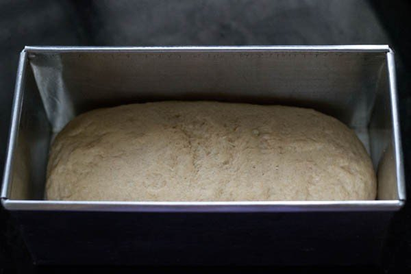 whole wheat bread in a loaf pan