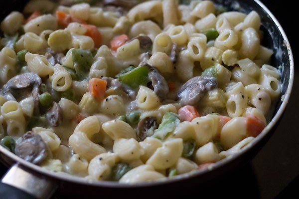 Pasta recipes with vegetables and cheese