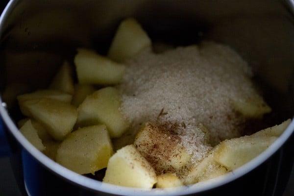 apple for apple milkshake recipe