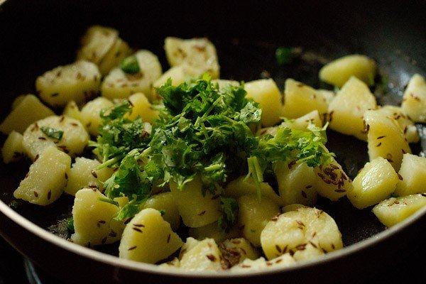 coriander for jeera aloo recipe