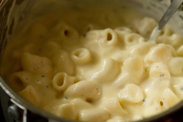 stir pasta for macaroni cheese recipe