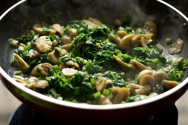 spinach for spinach mushroom lasagna recipe