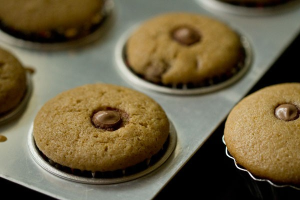 bake - chocolate chip muffins recipe