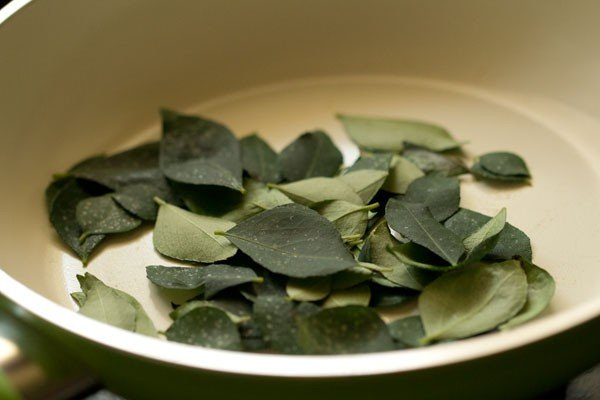 curry leaves for sambar powder recipe