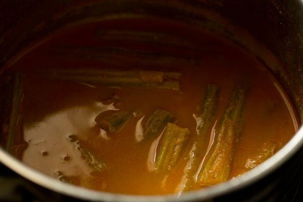 making drumstick curry recipe