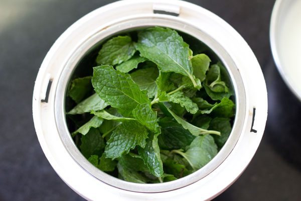 mint for mint raita recipe