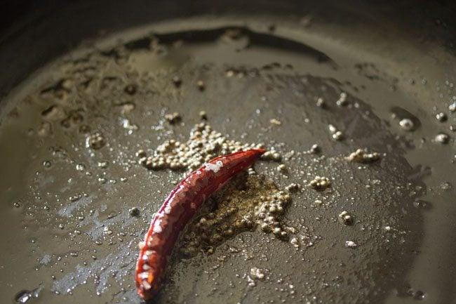 preparing cabbage pachadi recipe