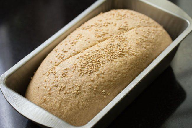 preparing whole wheat sandwich bread recipe