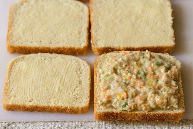 making veg coleslaw sandwich recipe