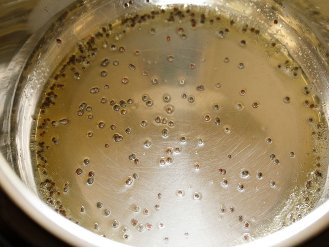 mustard seeds in instant pot