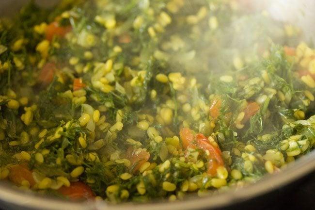preparing shepu moong dal bhaji recipe