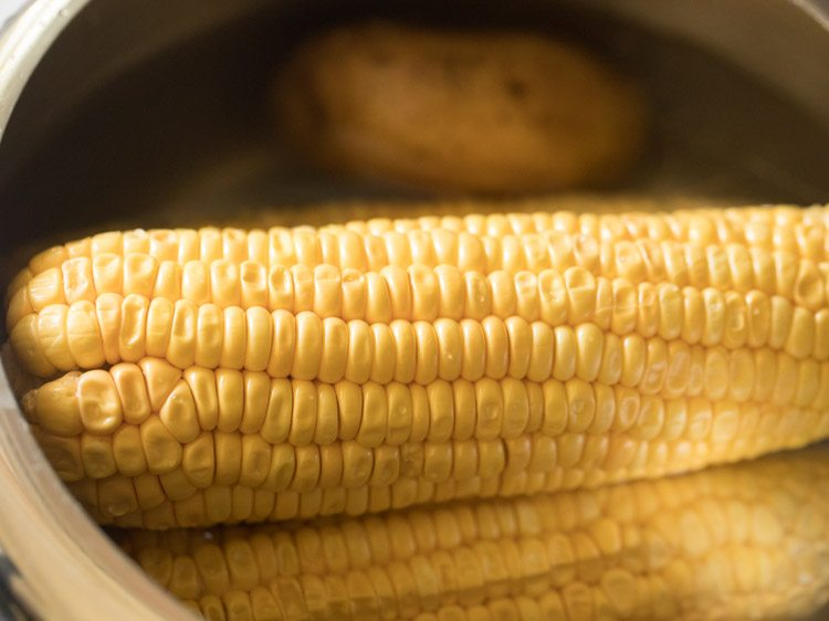 corn for making corn kabab recipe