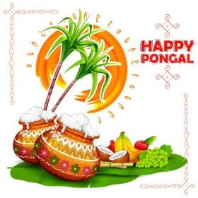 vector image illustrating pongal festival details