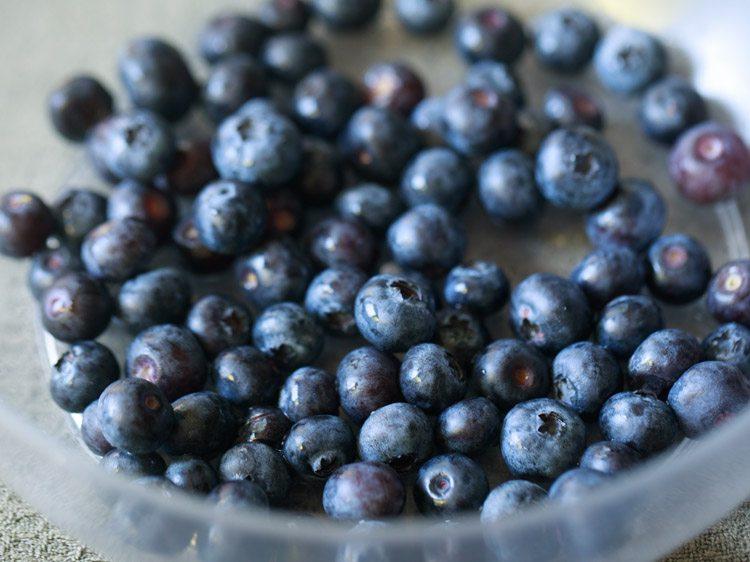 blueberries for making eggless blueberry muffins recipe