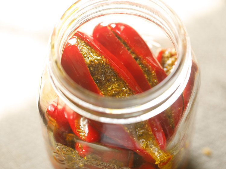 red chilli pickle recipe, lal mirch ka achar, stuffed red chilli pickle recipe