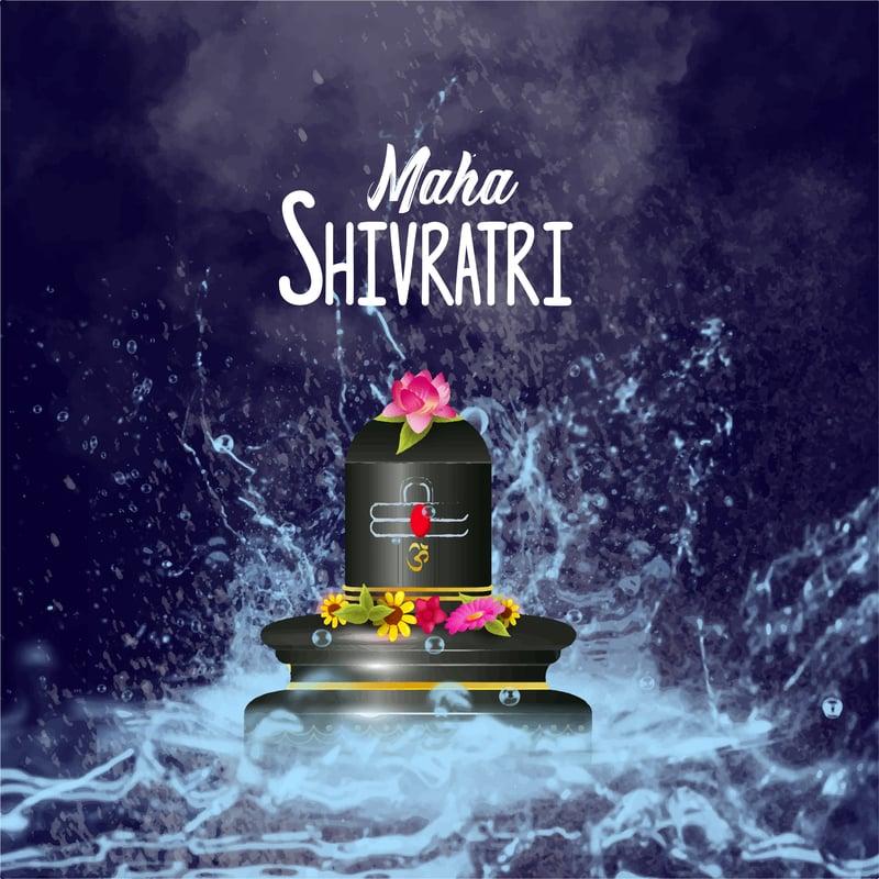vector image of black shivlinga with dark pink lotus on top and water splashing all around with a text of maha shivratri listed above the shivlinga