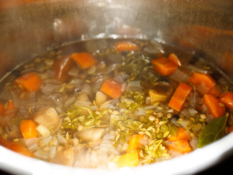 vegetable broth with all solids remaining in the Instant Pot