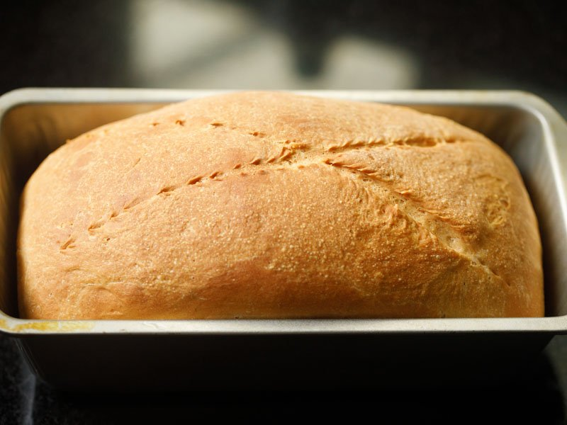 bread baked beautifully in the loaf pan with a golden crust