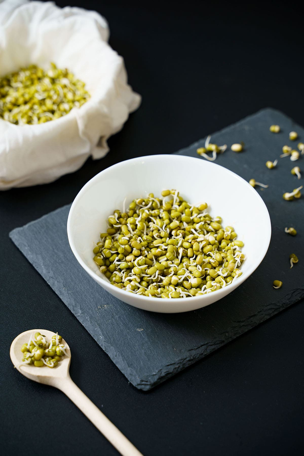 mung bean sprouts in a white bowl placed on dark gray slate board