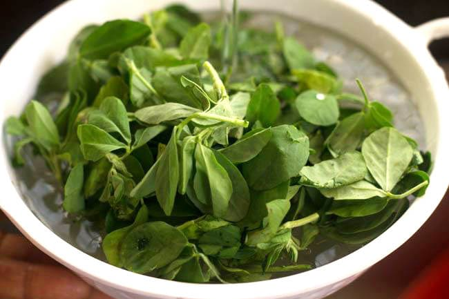 fresh fenugreek leaves in a white bowl with water