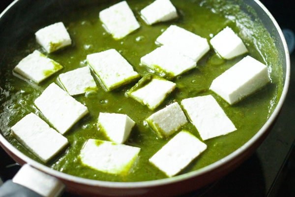 paneer cubes added to palak gravy